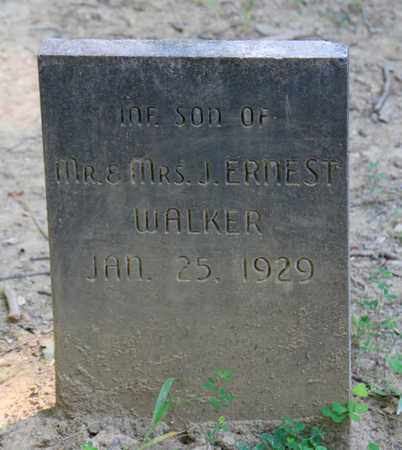 WALKER, INFANT SON - Sevier County, Tennessee   INFANT SON WALKER - Tennessee Gravestone Photos
