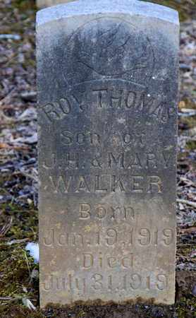 WALKER, ROY THOMAS - Sevier County, Tennessee | ROY THOMAS WALKER - Tennessee Gravestone Photos