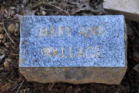WALLACE, MARY ANN - Sevier County, Tennessee | MARY ANN WALLACE - Tennessee Gravestone Photos