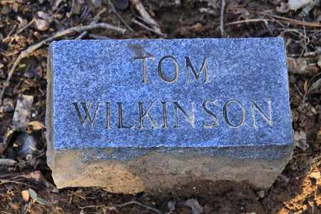 WILKINSON, TOM - Sevier County, Tennessee | TOM WILKINSON - Tennessee Gravestone Photos