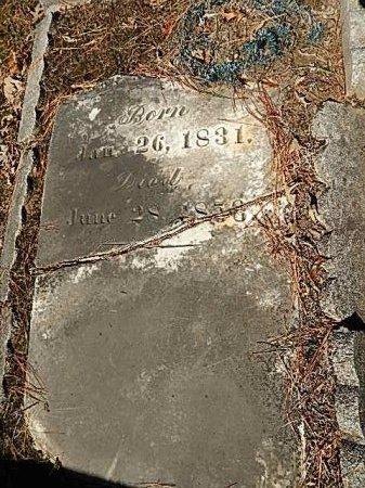 ABINGTON, MARY - Shelby County, Tennessee | MARY ABINGTON - Tennessee Gravestone Photos