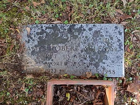 ABLES SR (VETERAN WWII), JAMES ROBERT - Shelby County, Tennessee | JAMES ROBERT ABLES SR (VETERAN WWII) - Tennessee Gravestone Photos