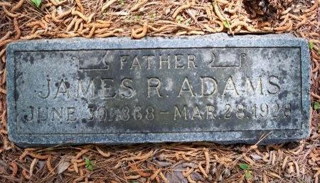 ADAMS, JAMES R. - Shelby County, Tennessee | JAMES R. ADAMS - Tennessee Gravestone Photos