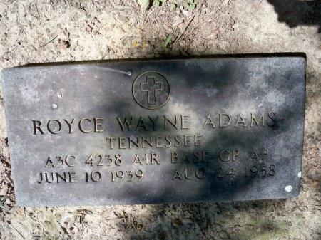 ADAMS (VETERAN), ROYCE WAYNE - Shelby County, Tennessee | ROYCE WAYNE ADAMS (VETERAN) - Tennessee Gravestone Photos