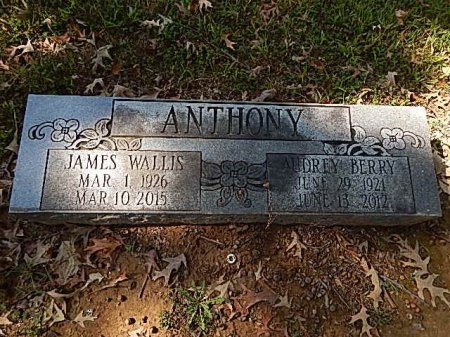ANTHONY, JAMES WALLIS - Shelby County, Tennessee | JAMES WALLIS ANTHONY - Tennessee Gravestone Photos