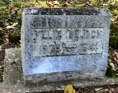 BEJACH, FELIX - Shelby County, Tennessee   FELIX BEJACH - Tennessee Gravestone Photos