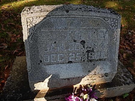 BLAKEY, ELOISE - Shelby County, Tennessee | ELOISE BLAKEY - Tennessee Gravestone Photos
