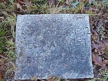 BLEDSOE, ALICE - Shelby County, Tennessee | ALICE BLEDSOE - Tennessee Gravestone Photos