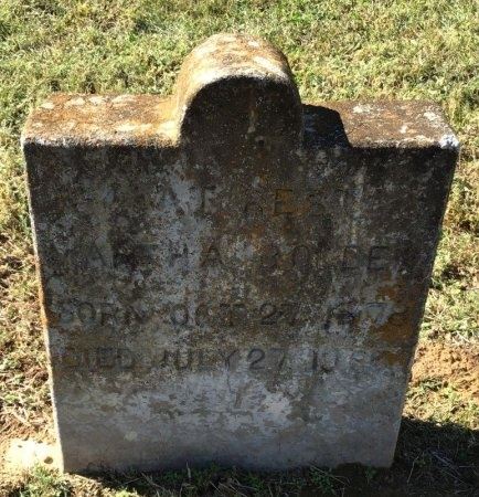 BOLDEN, MARTHA - Shelby County, Tennessee | MARTHA BOLDEN - Tennessee Gravestone Photos