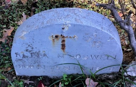 BOSWELL, RENA - Shelby County, Tennessee | RENA BOSWELL - Tennessee Gravestone Photos