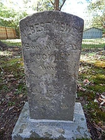 BUCKLEY, ALBERT DEWEY - Shelby County, Tennessee | ALBERT DEWEY BUCKLEY - Tennessee Gravestone Photos