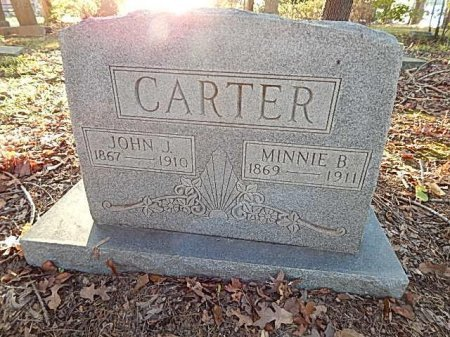 CARTER, MINNIE - Shelby County, Tennessee | MINNIE CARTER - Tennessee Gravestone Photos