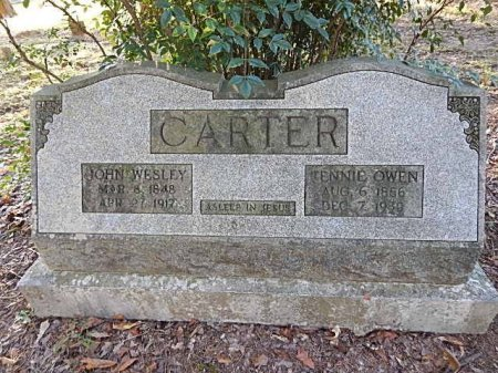 CARTER, TENNIE VIRGINIA - Shelby County, Tennessee | TENNIE VIRGINIA CARTER - Tennessee Gravestone Photos