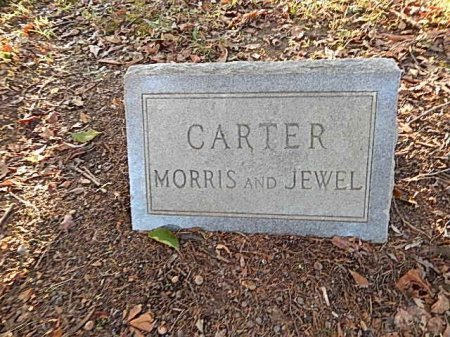 CARTER, MORRIS - Shelby County, Tennessee | MORRIS CARTER - Tennessee Gravestone Photos