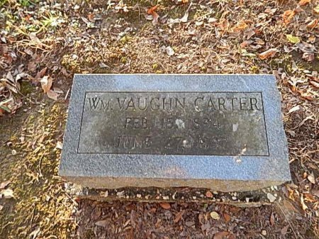 CARTER, WILLIAM VAUGHN - Shelby County, Tennessee | WILLIAM VAUGHN CARTER - Tennessee Gravestone Photos