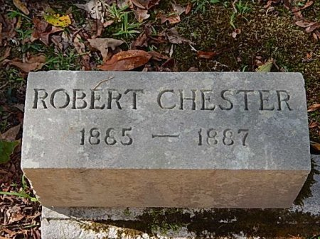 CHESTER, ROBERT - Shelby County, Tennessee | ROBERT CHESTER - Tennessee Gravestone Photos