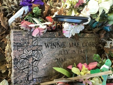 COBBS, WINNIE MAE - Shelby County, Tennessee | WINNIE MAE COBBS - Tennessee Gravestone Photos