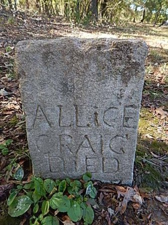 COPELAND CRAIG, ALICE - Shelby County, Tennessee | ALICE COPELAND CRAIG - Tennessee Gravestone Photos