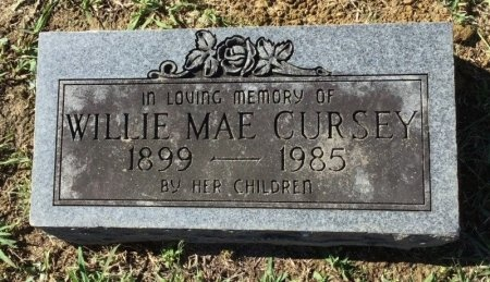 CURSEY, WILLIE MAE - Shelby County, Tennessee | WILLIE MAE CURSEY - Tennessee Gravestone Photos