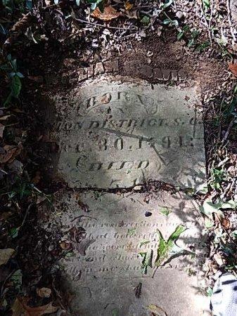 DAVIS, WILLIAM G - Shelby County, Tennessee   WILLIAM G DAVIS - Tennessee Gravestone Photos