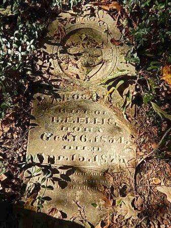 ELLIS, A ROSALIE - Shelby County, Tennessee | A ROSALIE ELLIS - Tennessee Gravestone Photos