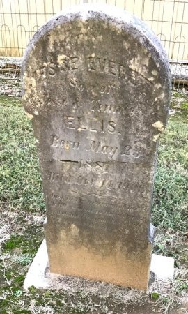 ELLIS, JESSE EVERETT - Shelby County, Tennessee | JESSE EVERETT ELLIS - Tennessee Gravestone Photos