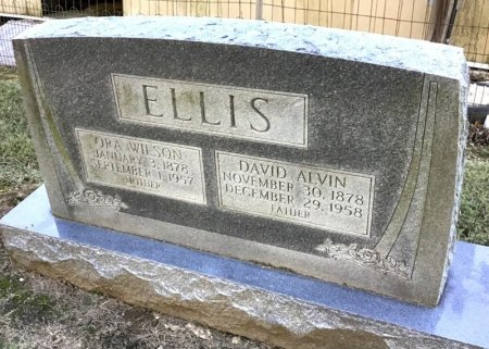 ELLIS, DAVID ALVIN - Shelby County, Tennessee | DAVID ALVIN ELLIS - Tennessee Gravestone Photos