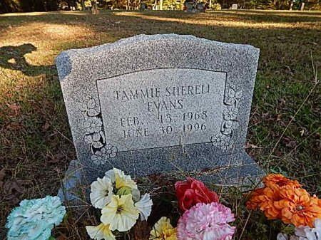 EVANS, TAMMIE - Shelby County, Tennessee | TAMMIE EVANS - Tennessee Gravestone Photos