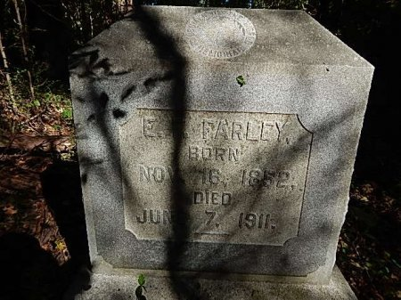 FARLEY, EYRE FOREST - Shelby County, Tennessee | EYRE FOREST FARLEY - Tennessee Gravestone Photos