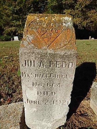 FEDD, JULA - Shelby County, Tennessee | JULA FEDD - Tennessee Gravestone Photos