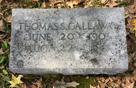 GALLAWAY, THOMAS S. - Shelby County, Tennessee | THOMAS S. GALLAWAY - Tennessee Gravestone Photos