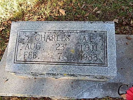 GRIFFITH, CHARLES A - Shelby County, Tennessee | CHARLES A GRIFFITH - Tennessee Gravestone Photos