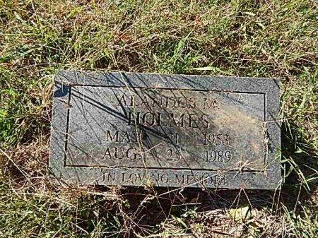 HOLMES, ALANDUS M - Shelby County, Tennessee | ALANDUS M HOLMES - Tennessee Gravestone Photos