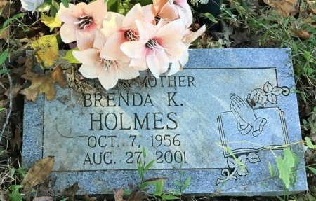 HOLMES, BRENDA K. - Shelby County, Tennessee | BRENDA K. HOLMES - Tennessee Gravestone Photos