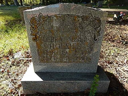 ABNER HOLMES, DEBRA - Shelby County, Tennessee | DEBRA ABNER HOLMES - Tennessee Gravestone Photos