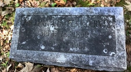 COOPER JARVIS, PAULINA - Shelby County, Tennessee | PAULINA COOPER JARVIS - Tennessee Gravestone Photos
