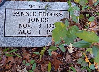 BROOKS JONES, FANNIE - Shelby County, Tennessee | FANNIE BROOKS JONES - Tennessee Gravestone Photos