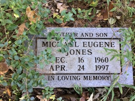 JONES, MICHAEL EUGENE - Shelby County, Tennessee | MICHAEL EUGENE JONES - Tennessee Gravestone Photos