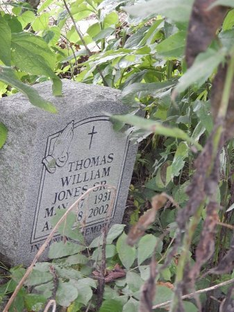 JONES SR, THOMAS WILLIAM - Shelby County, Tennessee | THOMAS WILLIAM JONES SR - Tennessee Gravestone Photos