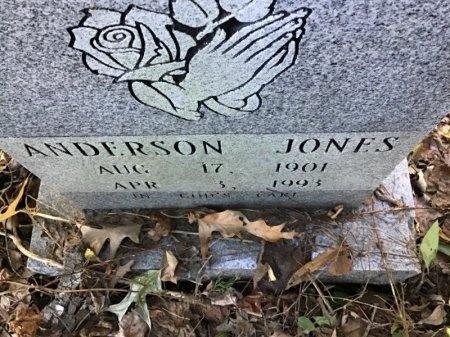 JONES, WILLIAMS - Shelby County, Tennessee | WILLIAMS JONES - Tennessee Gravestone Photos