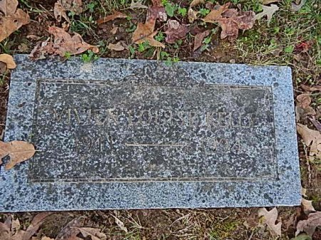 KELLY, VIVIEN LOUISE - Shelby County, Tennessee | VIVIEN LOUISE KELLY - Tennessee Gravestone Photos