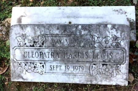 LEWIS, CLEOPATRA - Shelby County, Tennessee | CLEOPATRA LEWIS - Tennessee Gravestone Photos