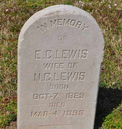 LEWIS, E.C. - Shelby County, Tennessee | E.C. LEWIS - Tennessee Gravestone Photos