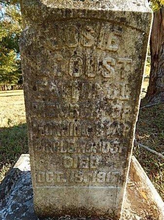 LOCUST, JOSIE - Shelby County, Tennessee | JOSIE LOCUST - Tennessee Gravestone Photos