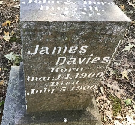 MERRILL, JAMES DAVIES - Shelby County, Tennessee | JAMES DAVIES MERRILL - Tennessee Gravestone Photos