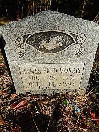 MORRIS, JAMES FRED - Shelby County, Tennessee | JAMES FRED MORRIS - Tennessee Gravestone Photos