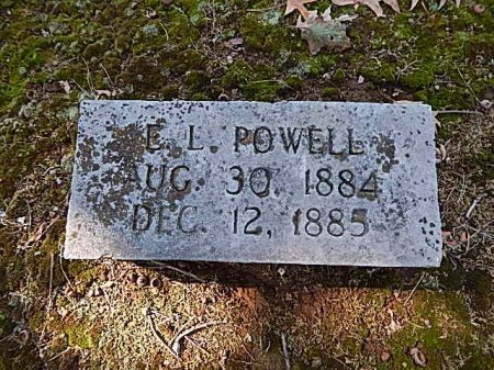 POWELL, E L - Shelby County, Tennessee | E L POWELL - Tennessee Gravestone Photos
