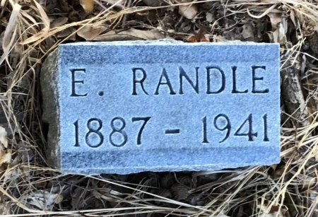 RANDLE, E. - Shelby County, Tennessee | E. RANDLE - Tennessee Gravestone Photos