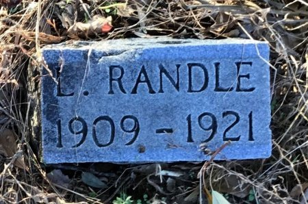 RANDLE, L. - Shelby County, Tennessee | L. RANDLE - Tennessee Gravestone Photos