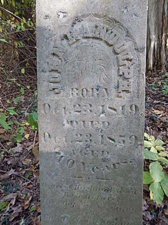 RANDOLPH, JOHN - Shelby County, Tennessee | JOHN RANDOLPH - Tennessee Gravestone Photos